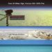 Dogcam flys 110 thousand feet high, View, Flat Earth Horizon, No Curve, FEVids